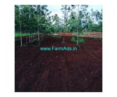 5 Acre Farm Land For Sale In Chikmagalur