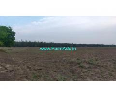 160 acres of paddy land for sale near Tindivanam