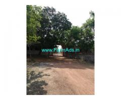 6000sq Ft Farm Plot for Sale near Kanchipuram