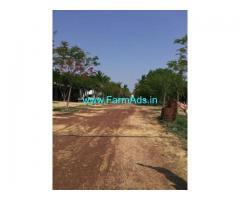 6000sq Ft Farm Plot for Sale near Kanchipuram