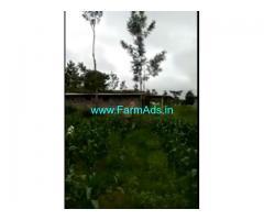 3 Acre Melia Dubia Farm Land for Sale Near Hassan