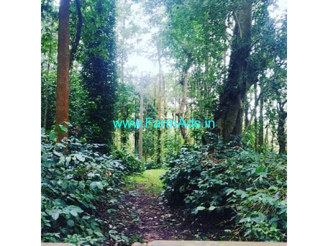 7.5 acre coffee estate for sale in Chikamagalur