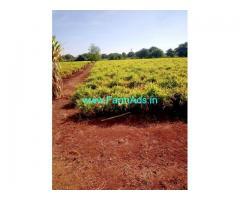 12.24 Acres Farm Land For Sale In Narsipura