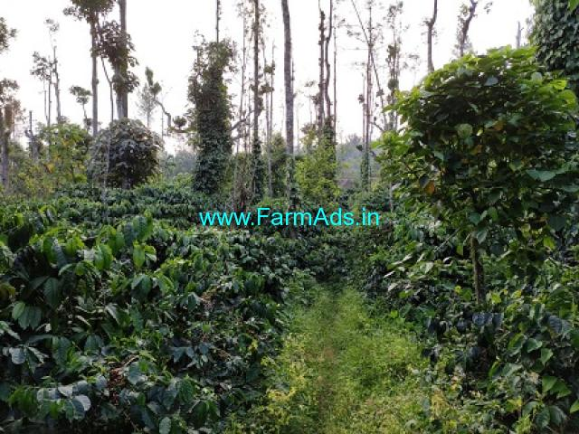 6.62 Acres Coffee Agriculture Land For Sale In Mudigere