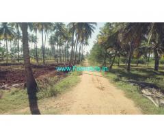 24  Acres Agriculture farm  land for sale near Hiriyur.
