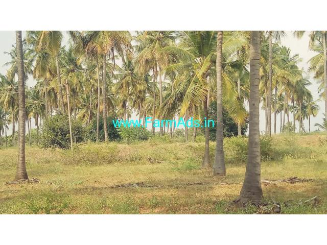 3 Acres Agriculture farm  land for sale near Hiriyur.