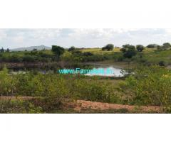 Agricultural farm  land for sale At Sira, Tumkur.   4 acre