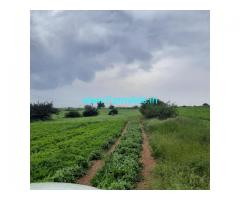 320 acres Agriculture land for sale at Goursamudra, challakere