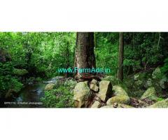 15 acres farm land for sale at Kodaikanal, natural farm