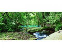 15 acres farm land for sale at Kodaikanal, natural farm