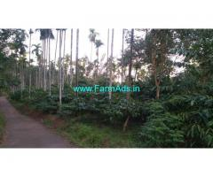 2 Acre Coffee Plot for sale at choyikolly, sulthan bathery road