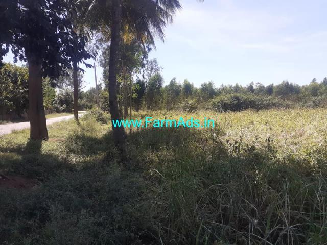 Half acre farm Land for sale at Mandi Byadarahalli village