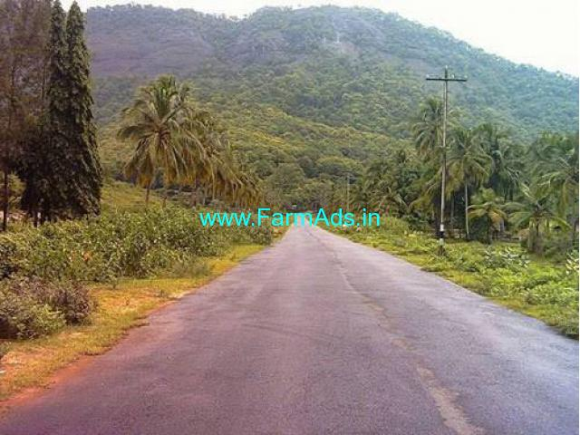 20 Cents Land for Sale at Wayanad