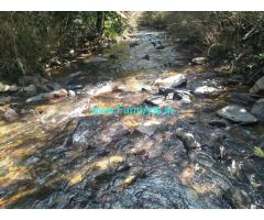 1.5 acre plain farm land sale in mudigere