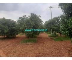 61 acres mango plantation for sale at Madhugiiri