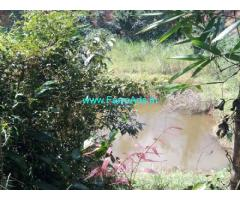 95 cents neglected Coffee estate for sale in Madikeri