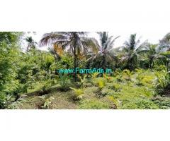 Urgent Sale Of 75 Cents Areca Farm In Bantwal