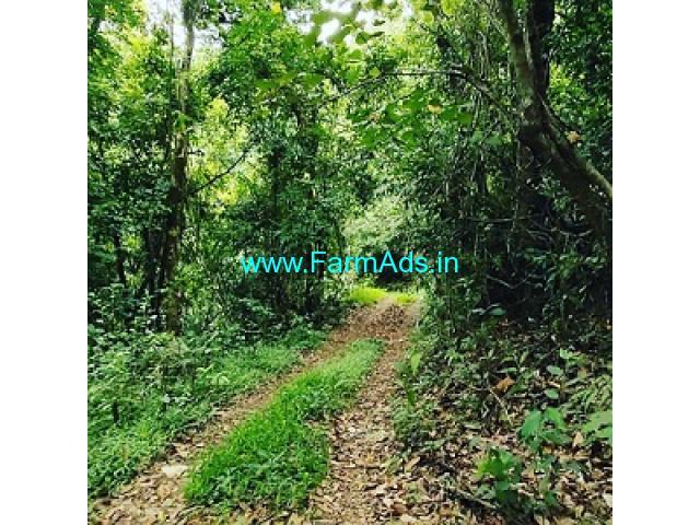 8 acres Farm land for sale in Sakleshpur