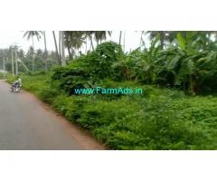 2.04 Acres Farm Land for Sale HunisanaHalli village