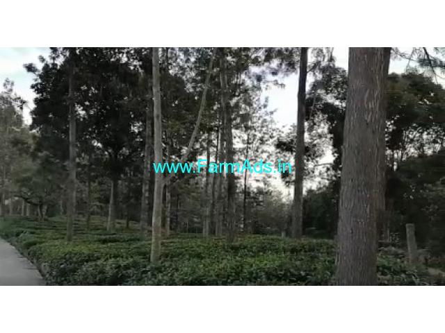 6 Acres Farm Land For sale In Kotagiri near Kodanad view point