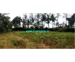 5 acre agriculture land for sale in Chikmagalur,near NH173,Kadur Road