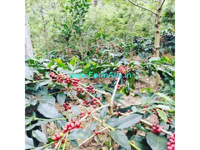 5 acre coffee estate for sale in Chikmagalur,Vastare