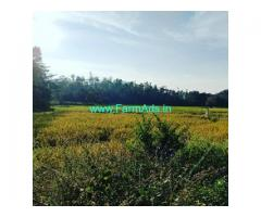 4.5 Acre Agriculture land For Sale In Hassan