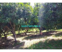 8 Acres Mango garden for Sale In Yaravaripayam