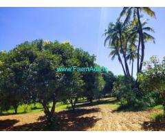 8 Acres Mango garden for Sale In Yaravaripayam