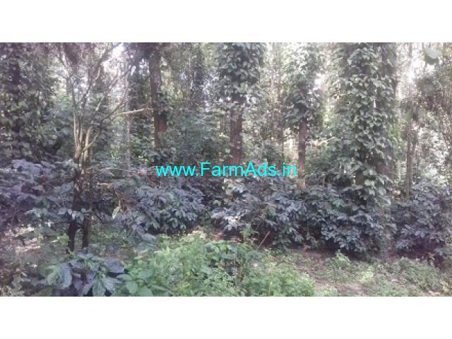 1 acre 30 Guntas Coffee plantation for sale in Kaimara Giri road