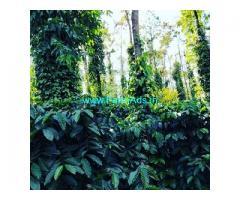 5 Acre coffee estate for sale in Sakleshpur,Kenchammana hoskote road