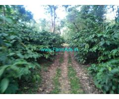 14 Acres Robusta plantation sale in Chikmagalur