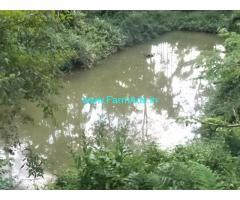 14 Acres Robusta plantation sale in Chikmagalur