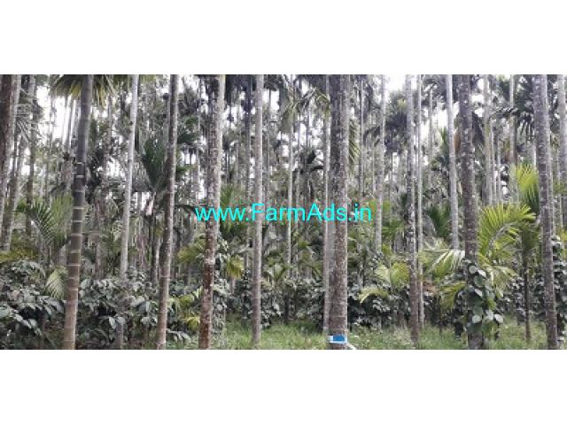 2 Acres Arecanut and Coffee plantation for sale in Chikmagalur