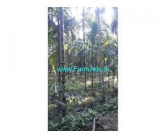 11.65 Acres Arecanut Farm for Sale near Guruvayankere