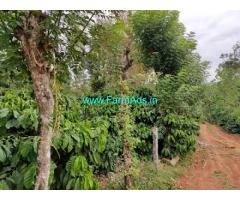 12.5 Acre Coffee Land For Sale near Mudigere