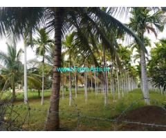 8.20 Acre Agriculture Land for Sale Near Sira