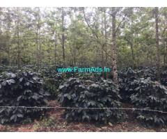 4 Acre Coffee estate for sale in Belur