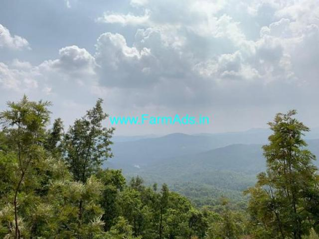 5.5 acre of Coffee Estate Mullayangiri Mountains,Chikmagalur