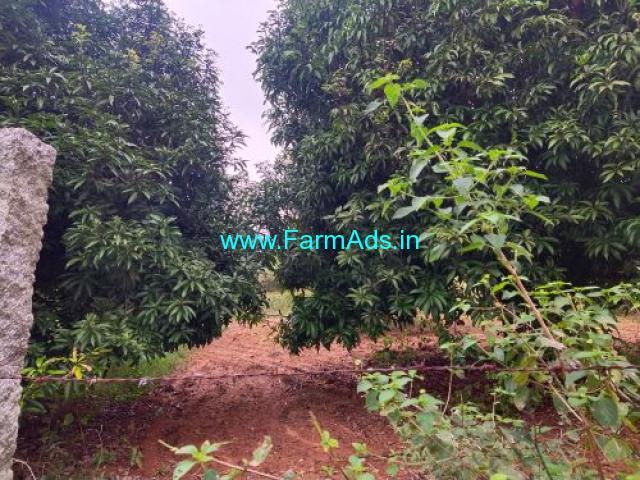4.5 Acers Mango garden for sale at piler, 75 kms from tirupati