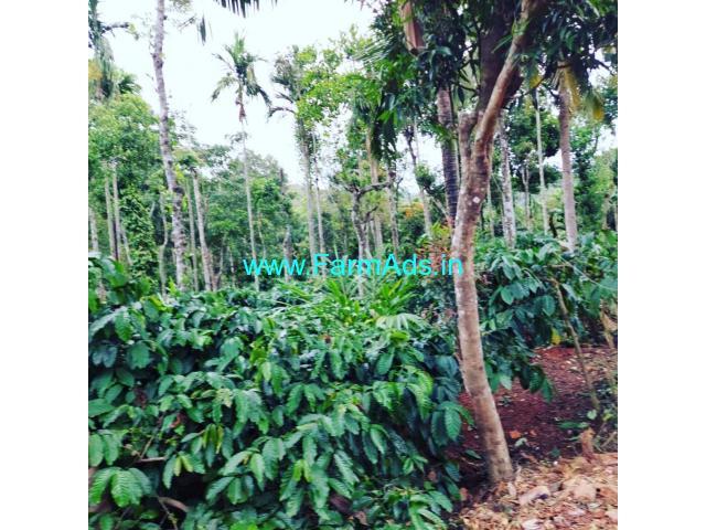 1 acre 32 Gunta coffee estate for sale in Sakleshpura