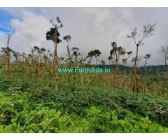 90 Acres coffee estate for sale in Sakleshpur