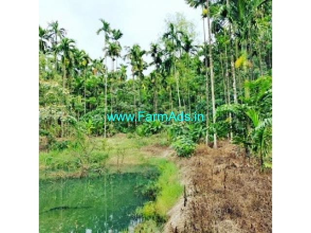 8 acre coffee estate for sale near Chikmagalur