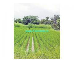 5 Acer land for sale in Gadwal district Ieeja Mandal Kesavaram village