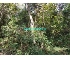 14 acre Farm land for Sale in Sakleshpur