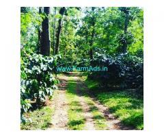 13 Acre Coffee estate for sale in Aldur