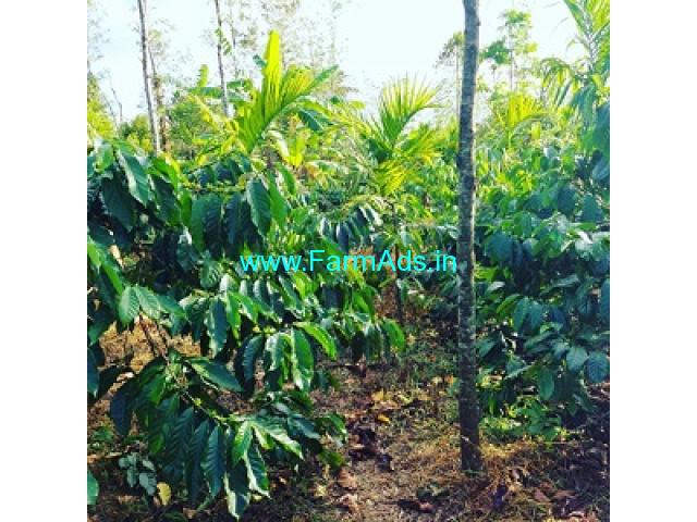 2 Acre Coffee Estate for sale in Mudigere