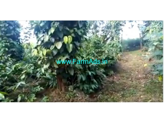 6 Acres Coffee Estate for Sale in Mudigere