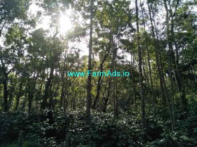 4 Acre Coffee Farm land for sale in Chikmagalur
