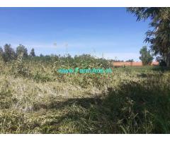 2 Acres Agriculture Land for sale at Karadipalya, Doddabelavangala Hobli